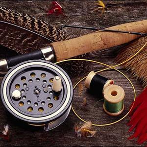Охотничьи и рыболовные магазины Вычегодского